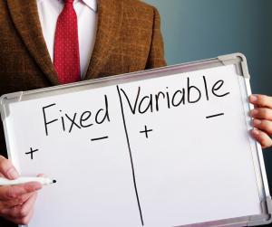 Budget: costi fissi e variabili